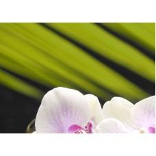 Азалия Орхидея - панно 1
