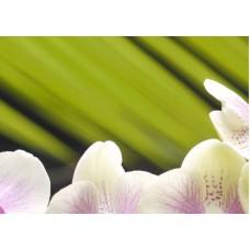 Азалия Орхидея - панно 2