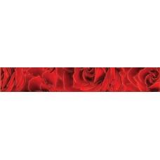 Престиж бордюр роза красный