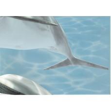 Лазурь декор дельфины 5 бирюзовый