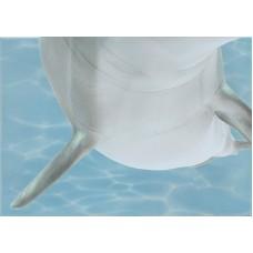 Лазурь декор дельфины 6 бирюзовый